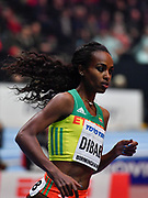 Genzebe Dibaba (ETH) wins the women's 3,000m in 8:45.05l during the IAAF World Indoor Championships at Arena Birmingham in Birmingham, United Kingdom on Thursday, Mar 1, 2018. (Steve Flynn/Image of Sport)