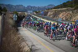 The peloton leaves Rotova after the start of Stage 1 of the Setmana Cicilsta Valenciana - a 118 km road race, between Rotova and Gandia on February 22, 2018, in Valencia, Spain. (Photo by Balint Hamvas/Velofocus.com)