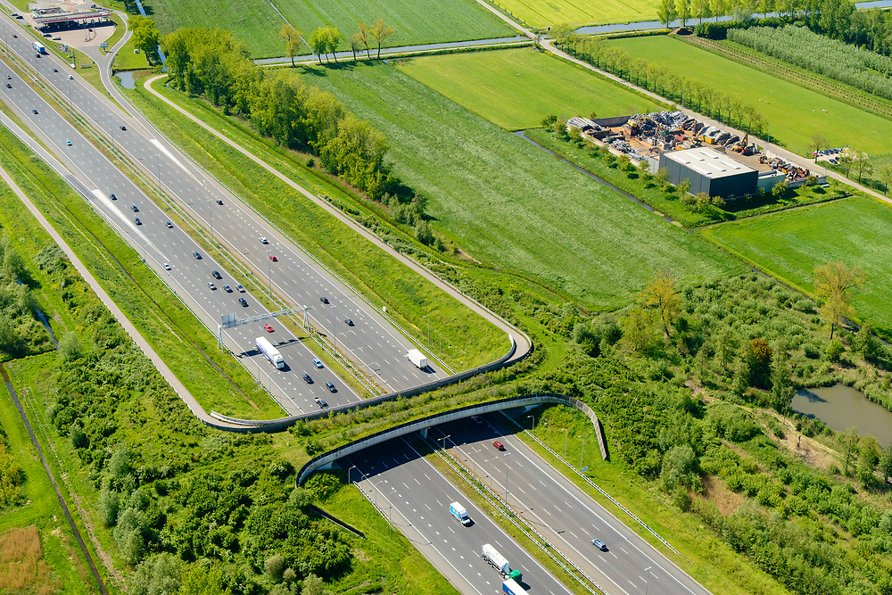 Nederland, Gelderland, Gemeente Geldermalsen, 13-05-2019; Ecoduct Lage Veld, ook ecoduct Beesdsche Veld genoemd, A2 ten noorden van Beesd.<br /> Ecoduct highway / motorway A2.<br /> aerial photo (additional fee required); luchtfoto (toeslag op standard tarieven); copyright foto/photo Siebe Swart
