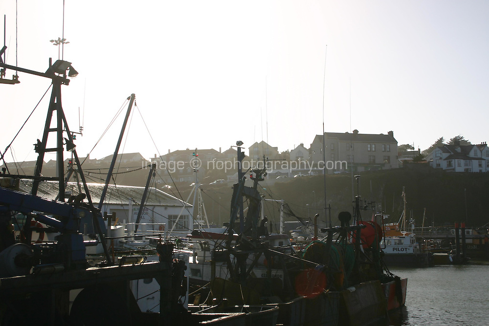 Evening light on Dunmore East Harbour, Waterford, Ireland