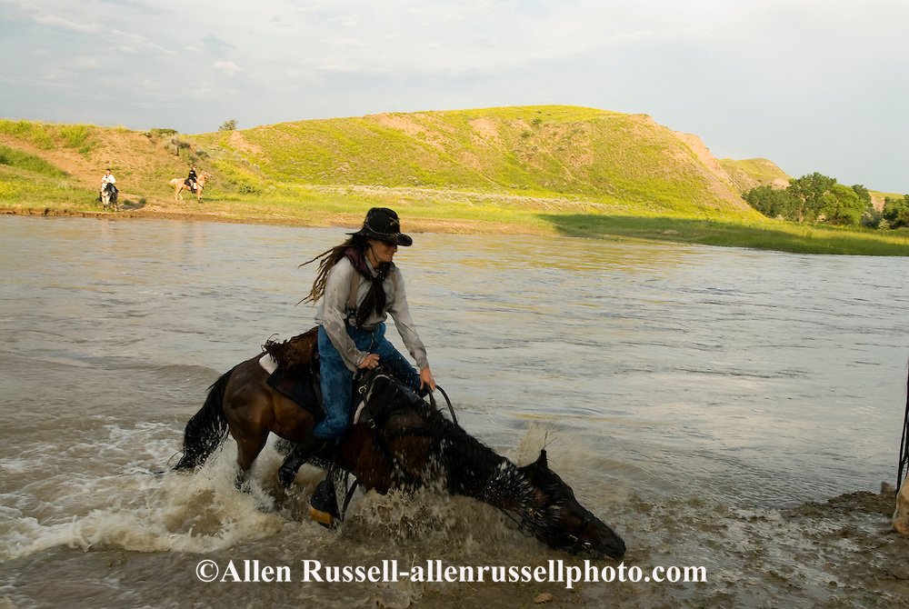 Custer's Last Stand Reenactment, Battle of the Little Bighorn, Crow Indian Reservation, Montana, 7th Cavalry scout reenactor horse struggles crossing Little Bighorn River, <br /> MODEL RELEASED
