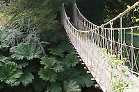 Rope footbridge in park in Ireland