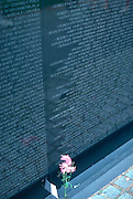 Flower at the national Vietnam War memorial.  Washington DC USA