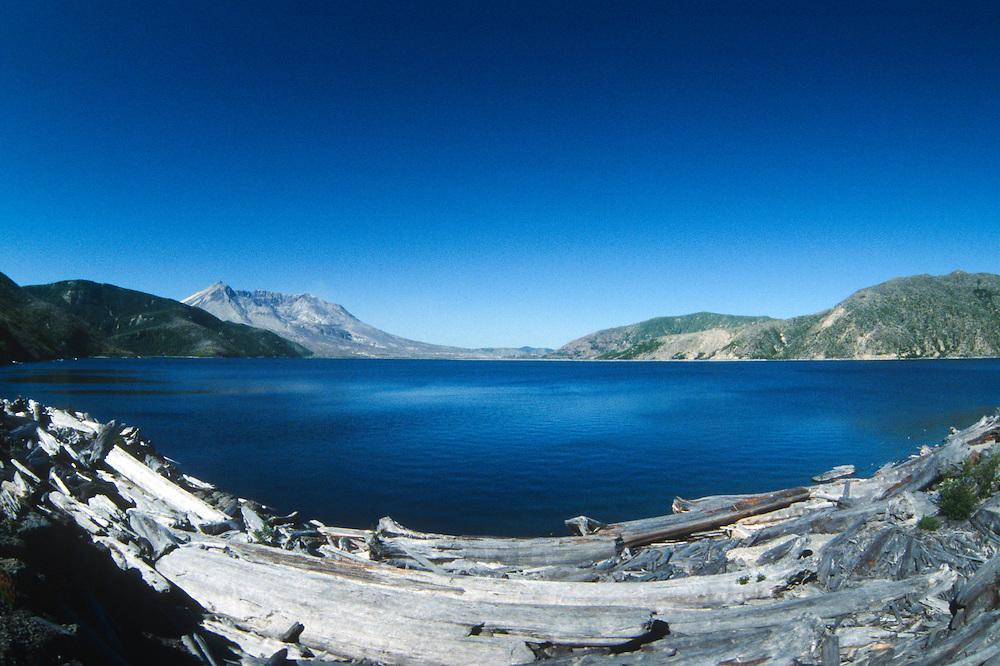 Downed Logs on Spirit Lake and Mt. St. Helens (Fisheye), Mt. St. Helens National Volcanic Monument, Washington, US