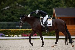 Pearce Simone, AUS, Feodoro<br /> Longines FEI/WBFSH World Breeding Dressage Championships for Young Horses - Ermelo 2017<br /> © Hippo Foto - Dirk Caremans<br /> 04/08/2017