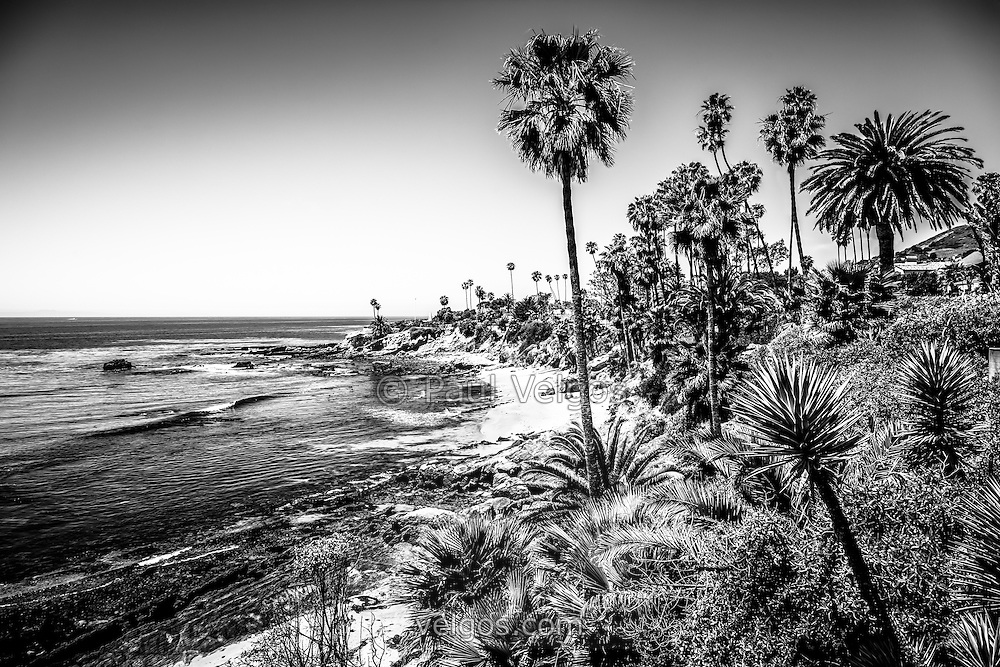 Orange county california black and white picture high resolution photo was taken in laguna beach