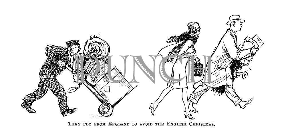 They fly from England to avoid the English Christmas.