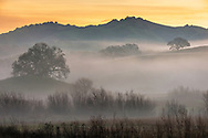 Morning mist in the Alhambra Valley, Contra Costa County, California