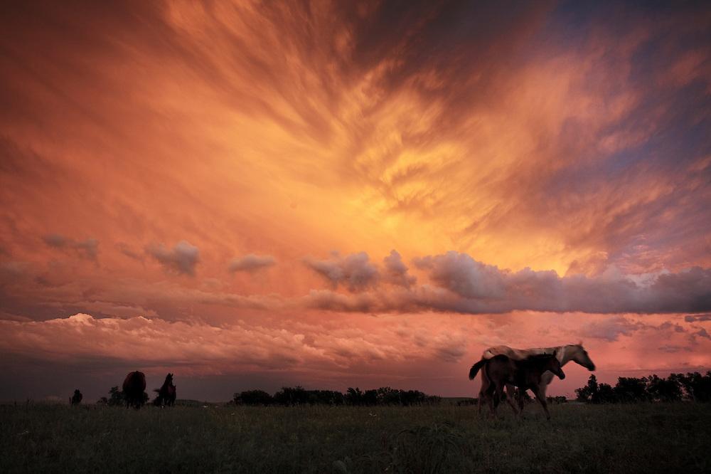 A receding thunderstorm creates blazing sunset near Bazaar in the Kansas Flint Hills.