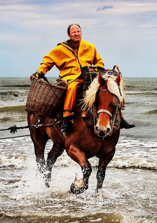 Xavier Vanbillemont, fishing with his horse Byron.  <br /> <br /> He is one of the twelve remaining horseback shrimp fishermen of Oostduinkerke, Belgium.<br /> <br /> Xavier's father and grandfather were both horseback fishermen and he proudly carries on the tradition, while also owning and running a bar in the town.  <br /> <br /> These days, none of the fishermen can rely on fishing for their living and consequently have additional jobs, but this tradition gives the community a strong sense of collective identity and plays a central role in social and cultural events.
