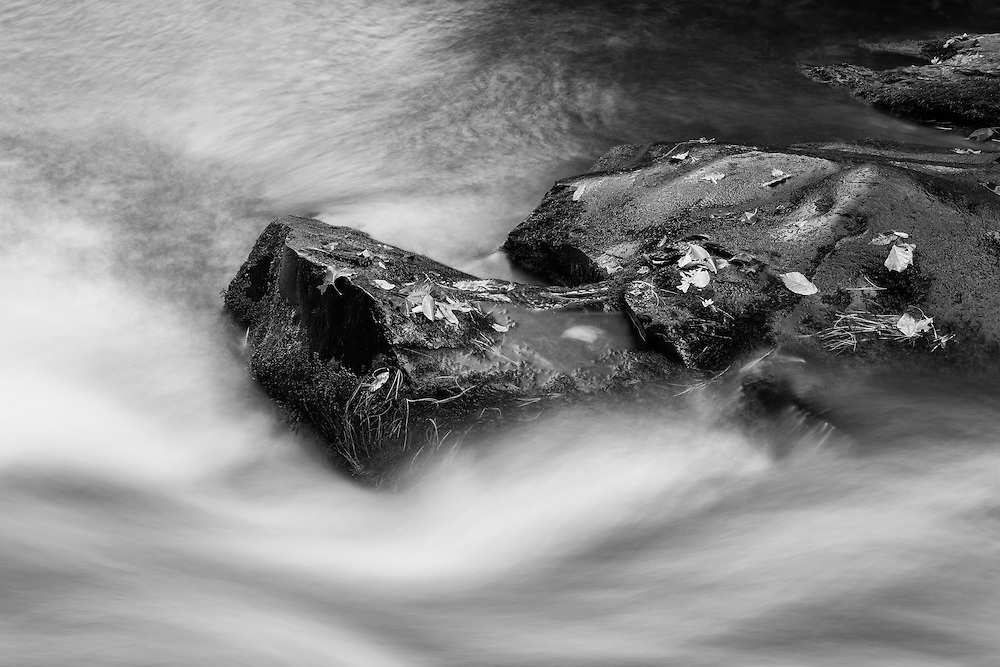 Small Cascades West Prong Little Pidgeon River - Great Smoky Mountains - Autumn - Black & White