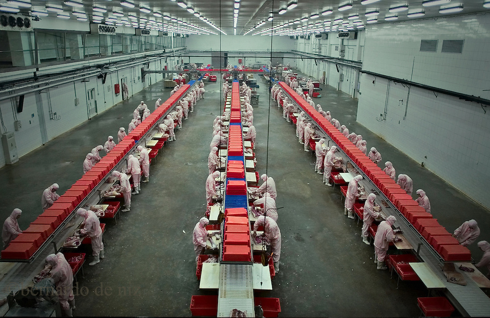 Chinese workers work inside of a meat factory in Jiangsu, China