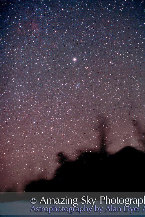 Canis major with Horizon<br /> Home - 50&deg; N latitude, Alberta<br /> 58mm Nikkor NOCT lens at f/2<br /> Ektachrome 200 slide film<br /> 4 minute exposure<br /> Glow layer added and flattened