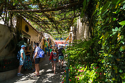 Positano, Italy, September 16 2017. Vines cover the steep streets of Positano, Italy. © Paul Davey