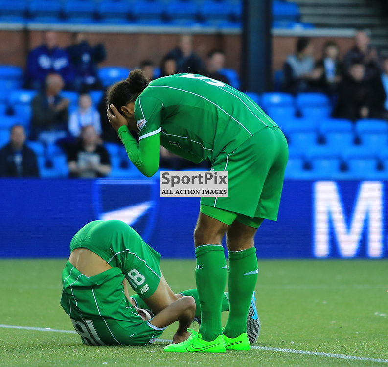 Celtic's Virgil van Dijk  can't believe the miss he has just witnessed from Celtic's Tomas Rogić  during the Kilmarnock FC V Glasgow Celtic FC Scottish Premiership 12th August 2015 ©Edward Linton | SportPix.org.uk