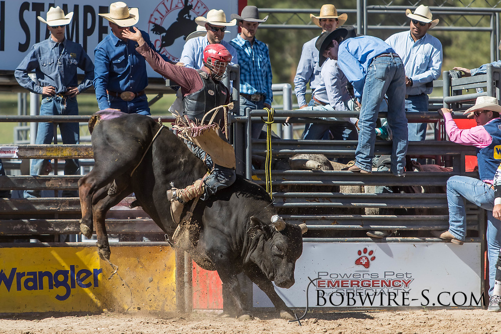 Bull rider Martin Gonzalez Chacon rides Summit Pro Rodeo's 325 Super Villian in the first performance of the Elizabeth Stampede on Saturday, June 2, 2018.