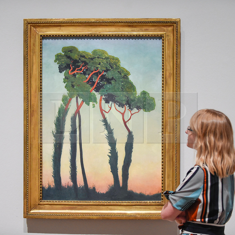 """© Licensed to London News Pictures. 27/06/2019. LONDON, UK.  A staff member views """"Last Rays (Dernier rayons)"""", 1911, by Félix Vallotton. Preview of """"Félix Vallotton:  Painter of Disquiet"""", an exhibition of paintings and prints Swiss artist Félix Vallotton at the Royal Academy of Arts.  Around 100 works are on show 30 June to 29 September 2019.  Photo credit: Stephen Chung/LNP"""