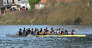 """London. ENGLAND. Saturday 26/01/2013 2013 Quintin Head, River Thames. ..Description - Middx station, Nottingham University, clash with University of Bristol, as they move the Notts crew push past,  under Chiswick Bridge, during the 2013 Quintin Head..[Mandatory Credit: Peter Spurrier/Intersport Images]..[Head Race: Processional"""" Time Trial].."""