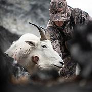 Mountain Goat Hunts