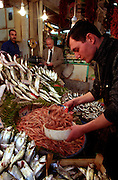 "Fish shop in an old covered markets in ""Beyoglu""..ISTANBUL, Androniki Christodoulou/WorldPictureNews"