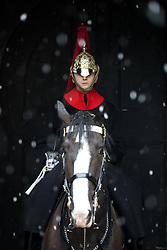 © Licensed to London News Pictures. 21/01/2018. London, UK. A member of the Household Cavalry sits on horseback during snowy and rainy weather in Horseguards Parade. Photo credit : Tom Nicholson/LNP
