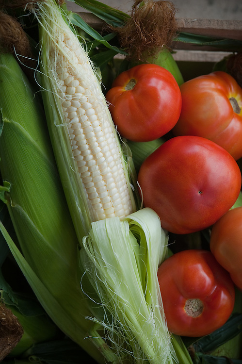 Corn and tomatoes
