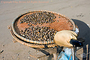 Snails are available as street food resting on a bicycle on a city street in Kampong Cham, Cambodia.