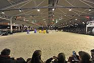 2015-01-azelhof-hengsten