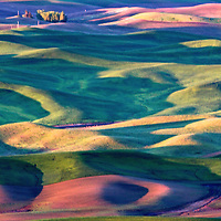 The Palouse Empire