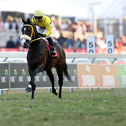 TILBURY FORT (Jockey) Greg Cheyne (Trainer) Sean Tarry during RACE 7 THE VODACOM DURBAN JULY (Grade 1) - 2200m – R4 250 000 at THE VODACOM DURBAN JULY at Greyville Racecourse in Durban, South Africa on 1st July 2017<br /> Photo by:  Steve Haag Sports