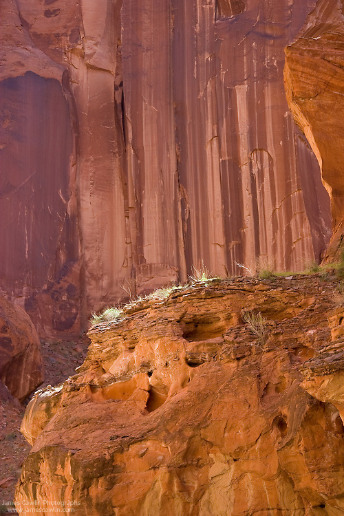 A highlighted ledge of rock in Paria Canyon