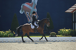 Bachmann Carina, (GER), Contador 25<br /> Nurnberger Burg-Pokal - St George Special<br /> Horses & Dreams meets Denmark - Hagen 2016<br /> © Hippo Foto - Stefan Lafrentz