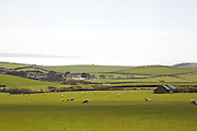 Fields looking towards the sea, the view from Pickwell Manor, Georgeham, North Devon, UK.<br /> CREDIT: Vanessa Berberian for The Wall Street Journal<br /> HOUSESHARE