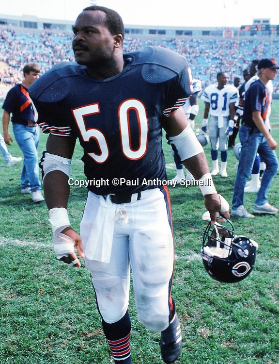 Chicago Bears linebacker Mike Singletary (50) walks off the field after the NFL football game against the Seattle Seahawks on Sept, 9, 1990 in Chicago. The Bears won the game in a 17-0 shutout. (©Paul Anthony Spinelli)