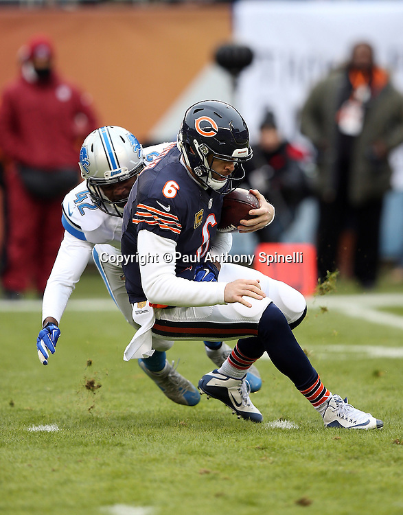 Chicago Bears quarterback Jay Cutler (6) gets tackled by Detroit Lions strong safety Isa Abdul-Quddus (42) as he runs for a first quarter first down during the NFL week 17 regular season football game against the Detroit Lions on Sunday, Jan. 3, 2016 in Chicago. The Lions won the game 24-20. (©Paul Anthony Spinelli)