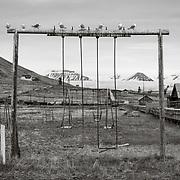 Playground and Glaucous Gulls, Russian coal mining settlement of Pyramiden, Spitsbergen, Svalbard, Arctic