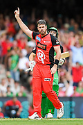 17th February 2019, Marvel Stadium, Melbourne, Australia; Australian Big Bash Cricket League Final, Melbourne Renegades versus Melbourne Stars; Dan Christian of the Melbourne Renegades celebrates a wicket