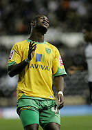 Derby - Tuesday October 28th, 2008: Leroy Lita of Norwich City in despair during the Coca Cola Championship match at Pride Park, Derby. (Pic by Michael Sedgwick/Focus Images)