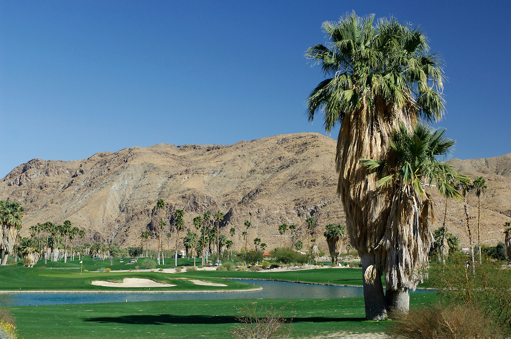 Golf course, Indian Canyons Golf Resort, Palm Springs, California, United States of America