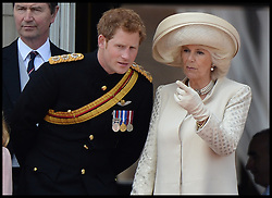 Prince Harry and The Duchess of Cornwall,on the Balcony at Buckingham Palace during Trooping The Colour, London, United Kingdom,<br /> Saturday, 15th June 2013<br /> Picture by Andrew Parsons / i-Images