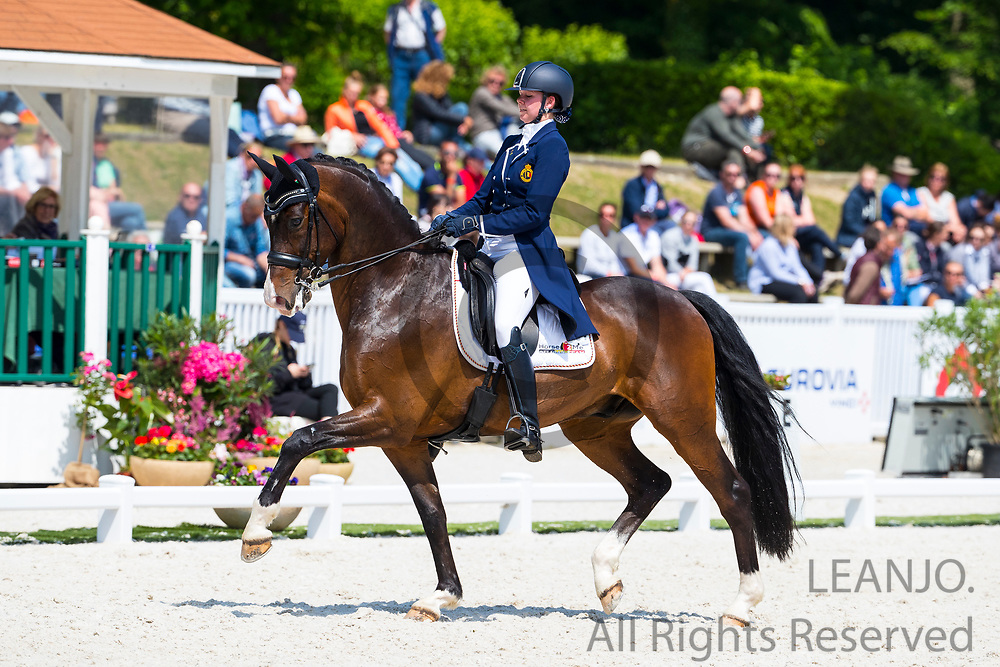 Laurence Roos - Fil Rouge<br /> CDI Compiegne 2018<br /> © DigiShots