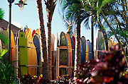 Surfboards, Waikiki, Oahu<br />