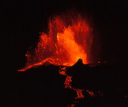 April 21, 2009: La Cumbre volcano erupts with a fountain of lava creating a red river flowing into the Pacific Ocean, thereby expanding Fernandina (Narborough) Island, in the Galápagos Islands, a province of Ecuador, South America. This eruption cycle started April 10, 2009 after 5 years of quiet. Fernandina Island was named in honor of King Ferdinand II of Aragon, who sponsored the voyage of Columbus. Fernandina is the youngest and westernmost island of the Galápagos archipelago, and has a maximum altitude of 1,494 metres (4,902 feet). Tourists are allowed to visit Punta Espinosa, a narrow stretch of land where hundreds of Marine Iguanas gather largely on black lava rocks. The Flightless Cormorant, Galápagos Penguins, Pelicans and Sea Lions are abundant on this island of lava flows and Mangrove Forests.