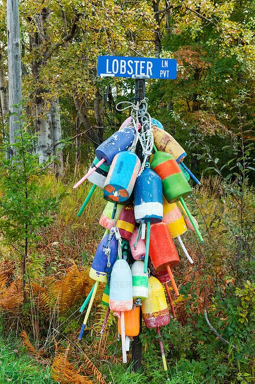 Lobster Lane buoys, Owls Head, Maine, USA