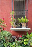 Garden window on the property of the Restaurante Hacienda Ticuch near Valladolid, Mexico.