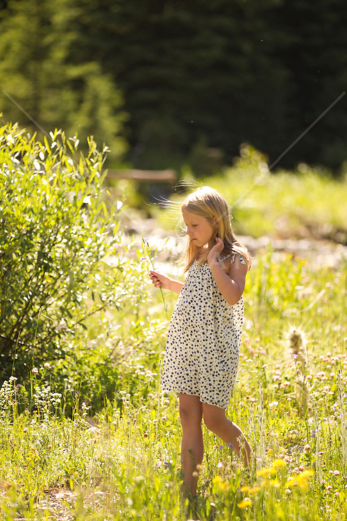 little blonde girl in a sun lit field of wildflowers by a stream in the woods