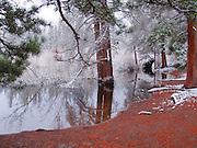 Reflections, Sprague Lake, Rocky Mountain National Park