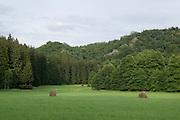 bei Falkenstein, Selketal, Harz, Sachsen-Anhalt, Deutschland | near Falkenstein, Selke valley, Harz, Saxony-Anhalt, Germany
