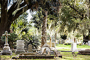 Tombstones in historic Magnolia Cemetery in Charleston, South Carolina.