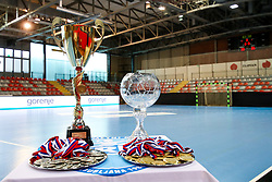 The trophies and medals prior to handball match between RK Zagorje and RK Krim Mercator in Final game of Slovenian Women Handball Cup 2017/18, on April 1, 2018 in Park Kodeljevo, Ljubljana, Slovenia. Photo by Matic Klansek Velej / Sportida
